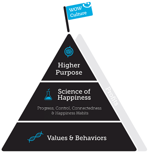 Delivering Happiness Culture Model Pyramid