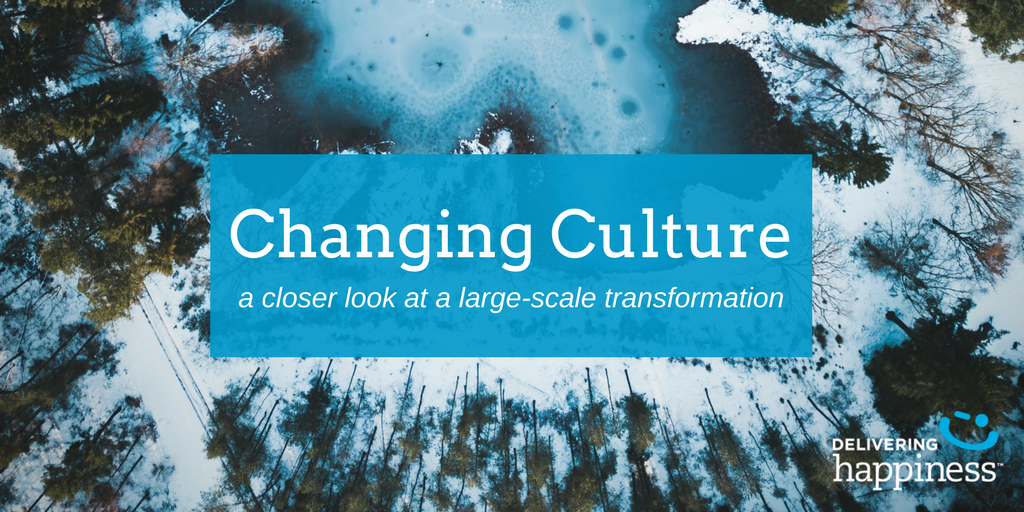northwell health scaling culture change transformation case study.png