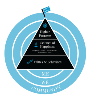 delivering happiness culture blueprint model framework
