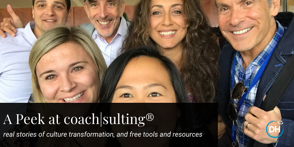 A peek at Delivering Happiness's coach|sulting!