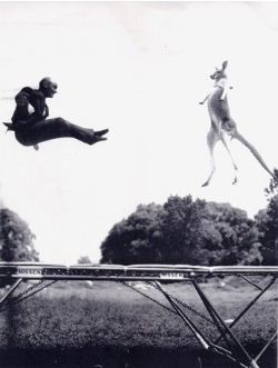 George Nissen and kangaroo